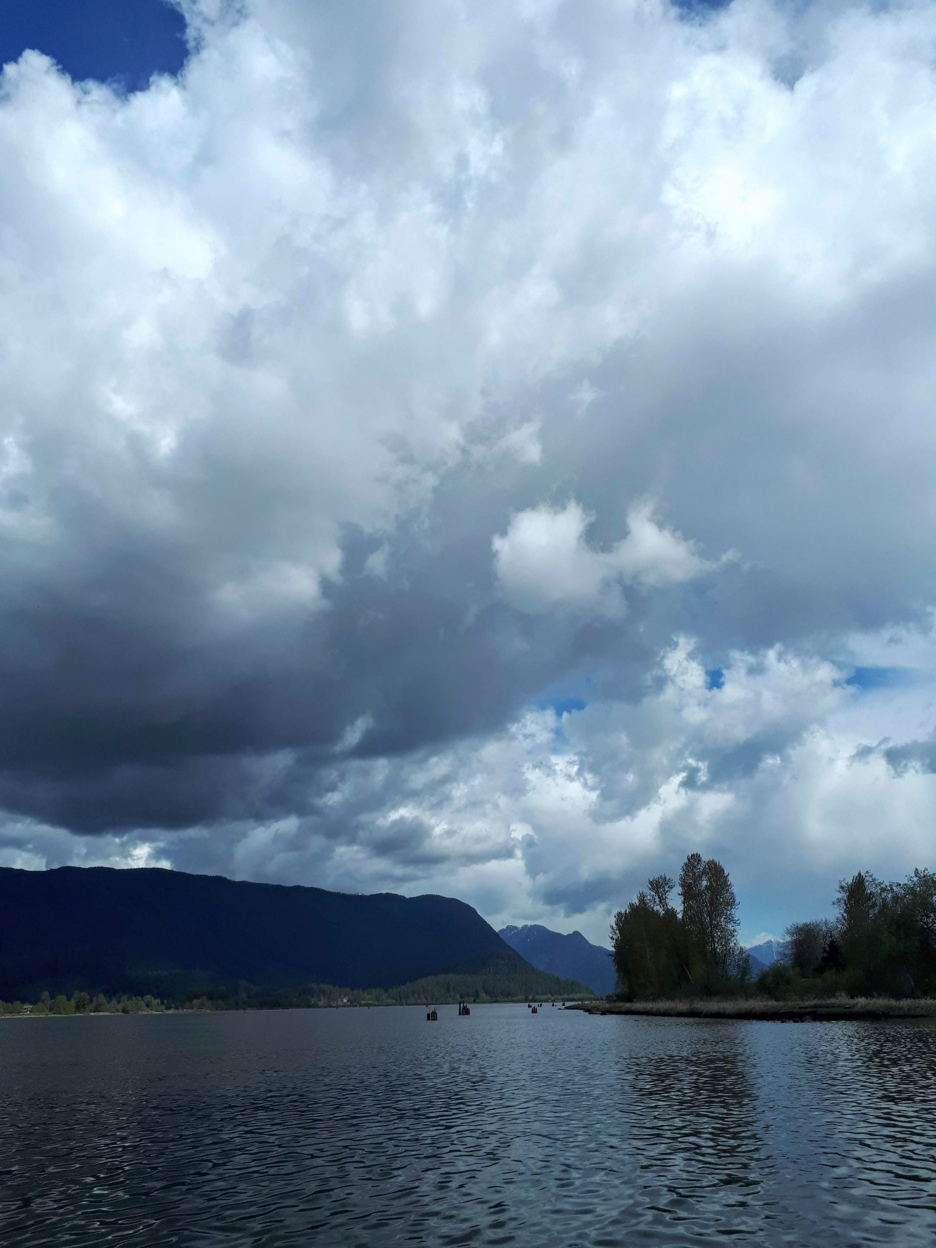 The view from the docks at the Pitt Meadows Marina