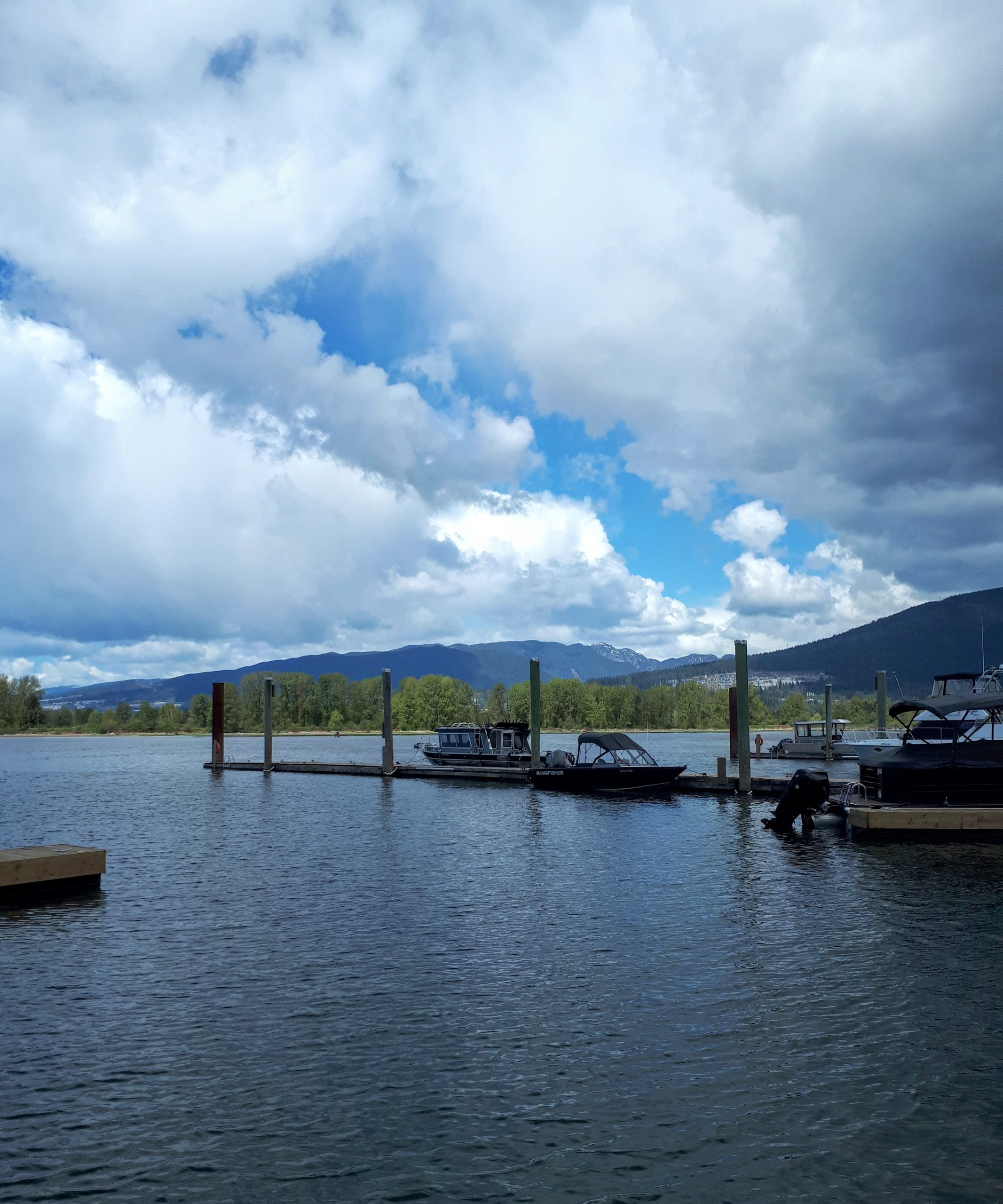 The gorgeous view at the Pitt Meadows Marina